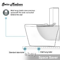 Concealed In Wall Toilet Carrier System 2 In. X 4 In. Wall Hung 1.28 Gpf Dual