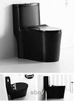 Matte Black Toilet Modern One Piece Dual Flush Savaro