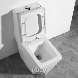 One Piece Toilet Modern Bathroom Toilet Dual Flush Toilet Maccione 27.6