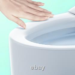 Toilet Ceramic Close Coupled Soft Close Cistern Modern Traditional Back To Wall