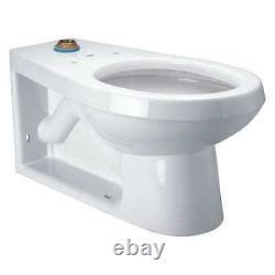 ZURN Z5635-BWL 1.28 to 1.6 gpf, Flush Valve, Floor Mount, Elongated, Toilet Bowl
